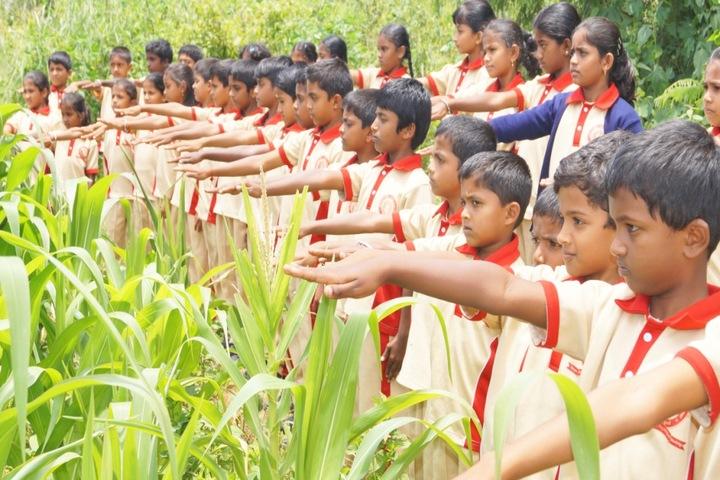 Christa Jyothi School-Earth Day