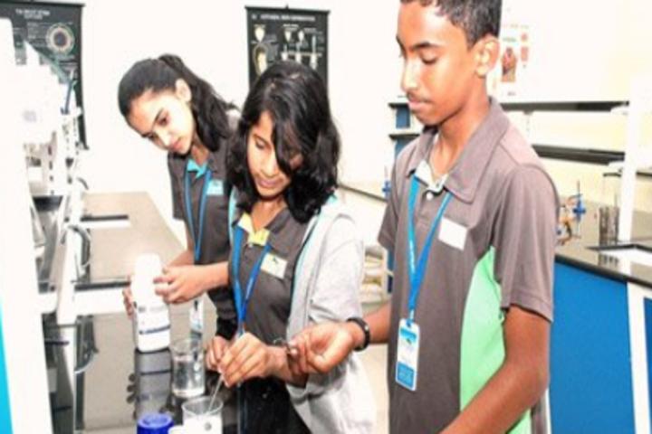 Chrysalis High-Chemistry Lab