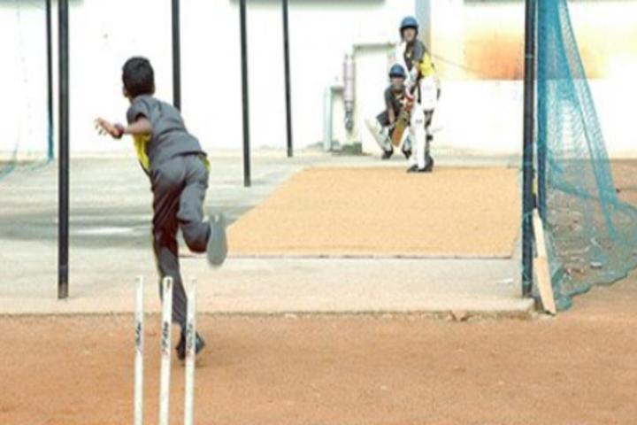 Chrysalis High-Cricket