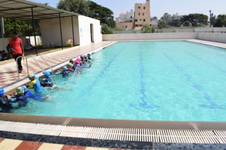 Chrysalis High-Swimming