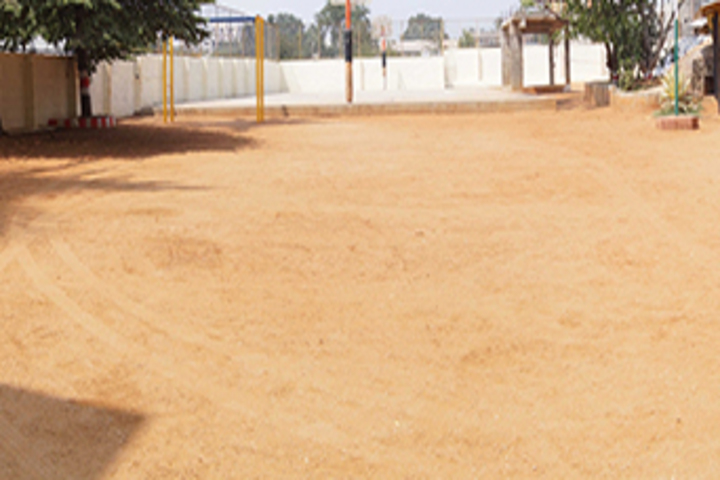 Dayananda Arya Vidya Public School-Playground