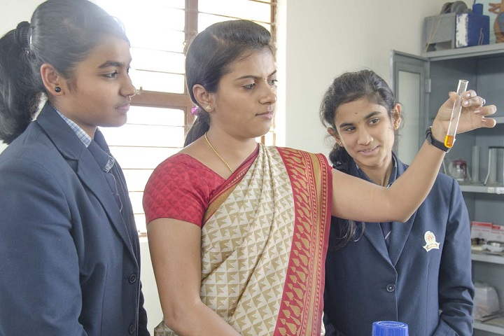 Dayananda Arya Vidya Public School-Laboratory Chemistry