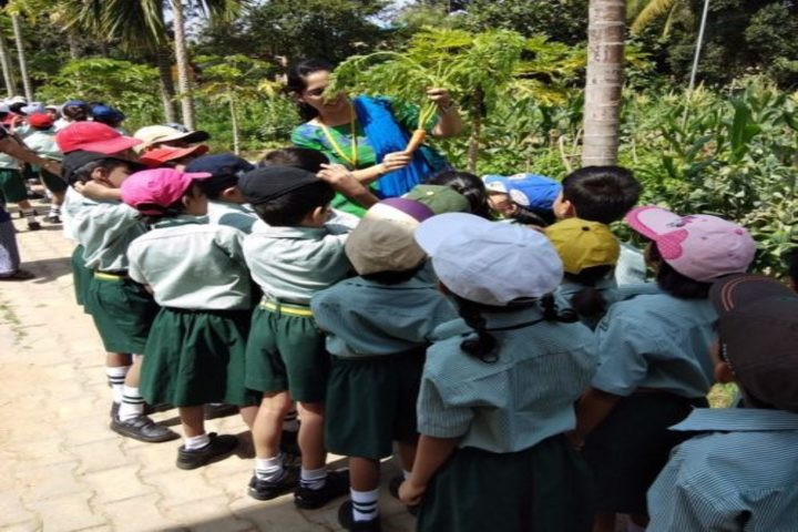 Dhee Global School-Field Trip