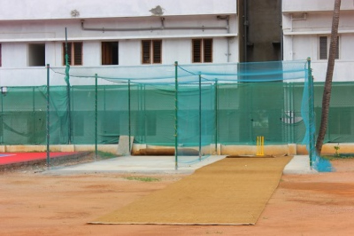 Global City International School-Cricket Practice