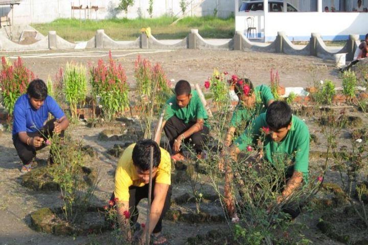 De Pauls Public School-Gardening