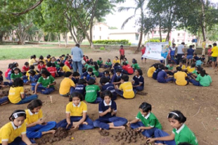 Jawahar Navodaya Vidyalaya-Seed Ball Programme