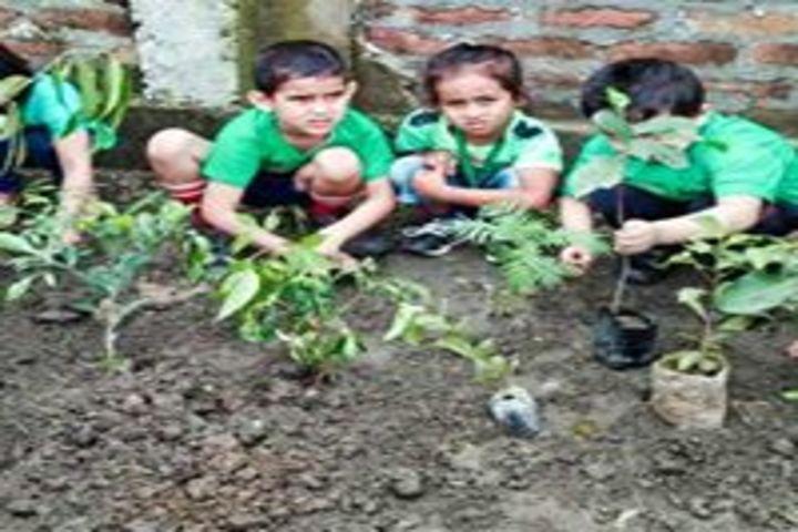 Delhi public school kamrup - go green