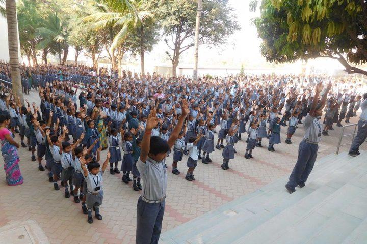 Katherine Public School- Exercise