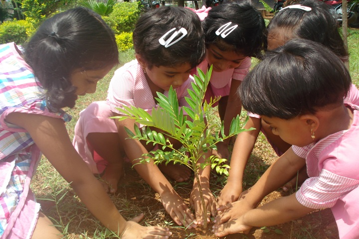 MHNational Public English School-Plantation