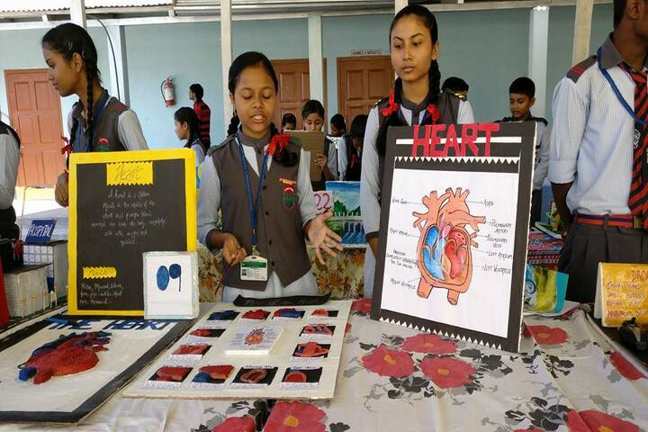 Green meadows school-Science Exhibition