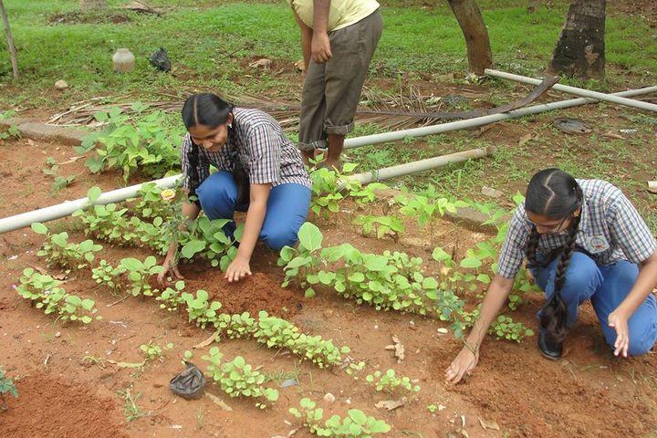 Maruthi Public School-Plantation Day