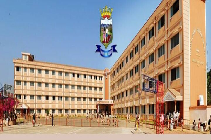 Mount Carmel Central School-Campus View