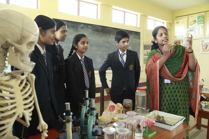 Mount Carmel School-Biology Lab