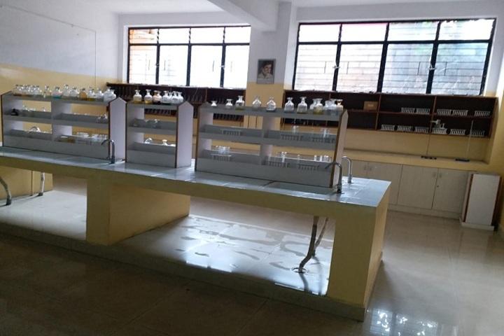 New Cambridge International Public School-Chemistry Lab