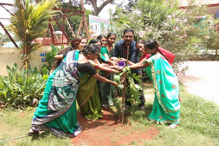 Nishara Public School-Tree Plantation
