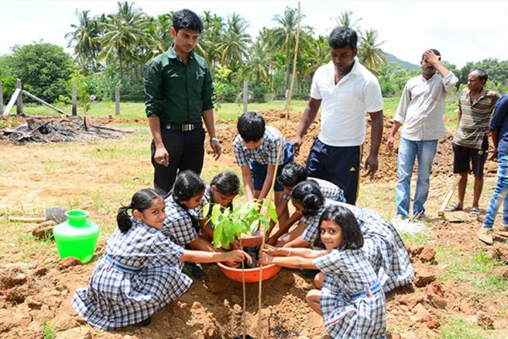 Prudence International Residential School-Tree Plantation