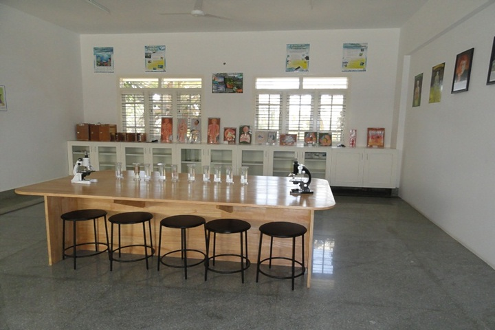RMS International School-Labs
