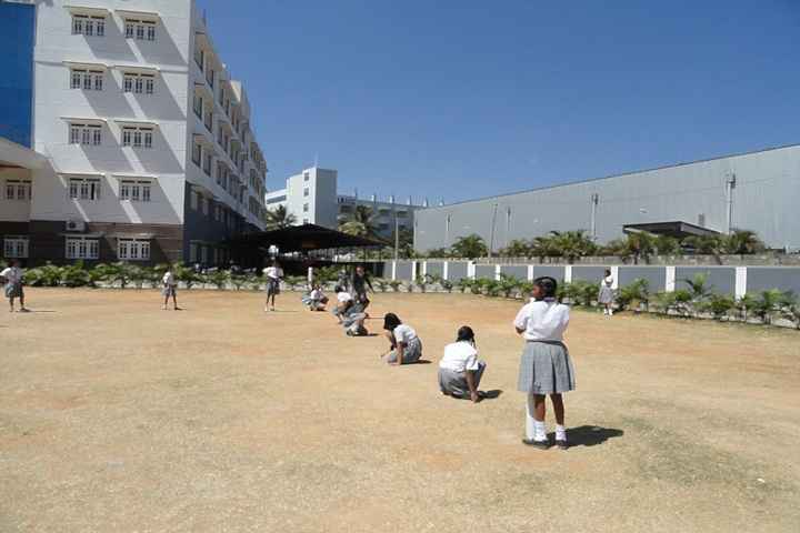 RMS International School-Sports