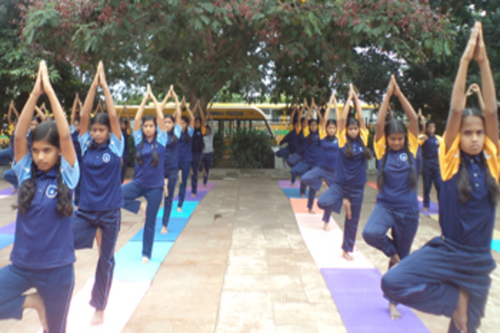 Sri Venkateshwara Central School-Yoga
