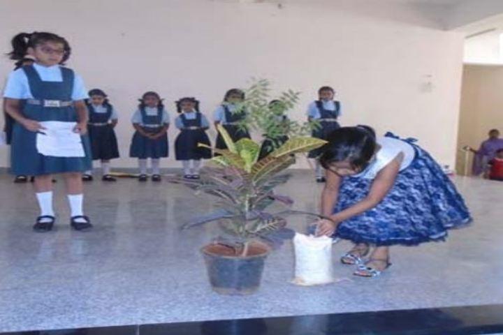 S R N Mehta School-Environment Day