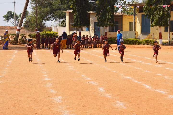 S V E I School-Primary Sports Day