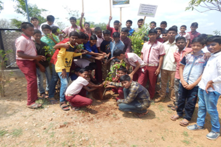 Shri Siddhaganga Residential School Kudalasangam-Tree-Plantation