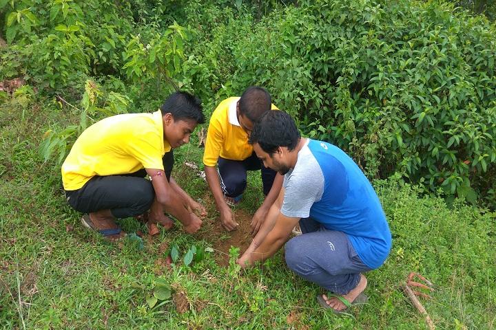 Jawahar Navodaya Vidyalaya-Plantations