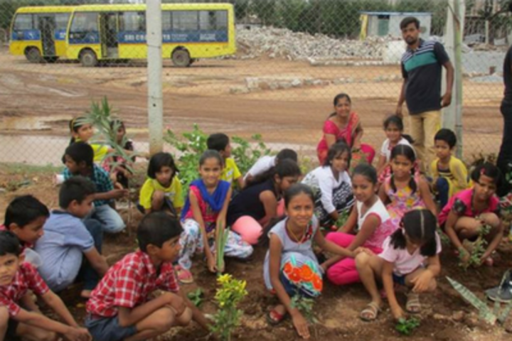 Sri Chaitanya Techno School-Tree-Plantation