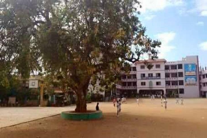 St Marys School-Play Ground