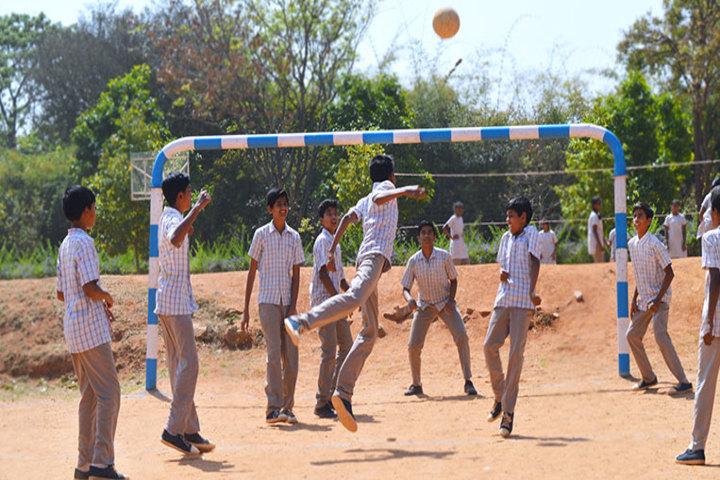 T V S School-Sports