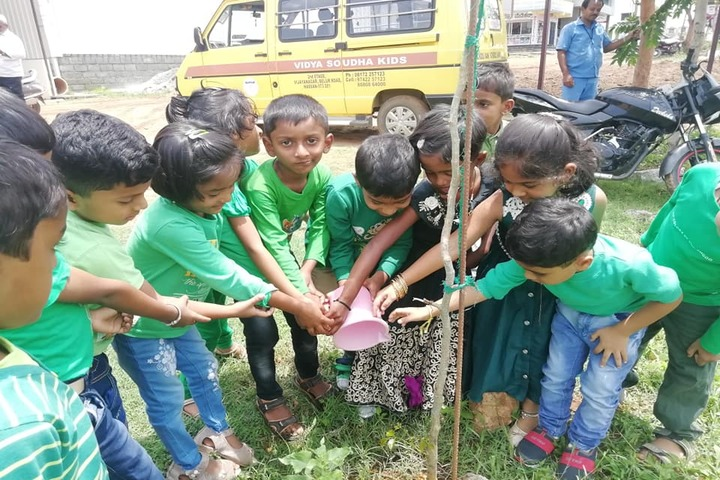 Vidya Soudha Public School-Tree Plantatition