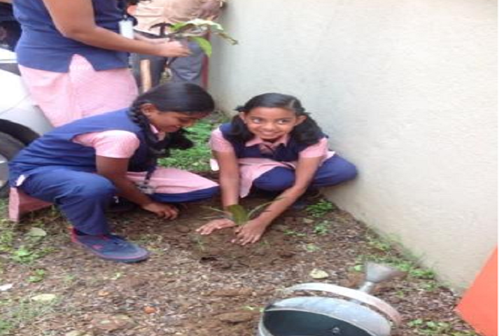 Vidyavardhaka Sangha B M Sri Educational Institutions-Environment Day