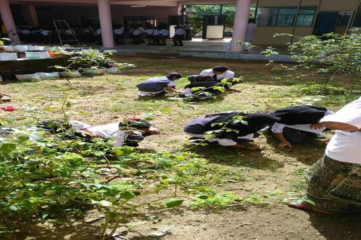 Alpha Public School-Plantation Activity