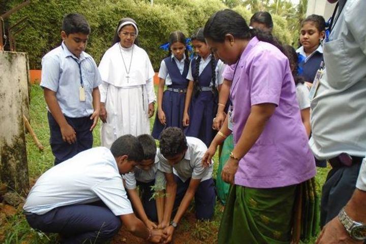 Amala Mary Rani Public School-Plantation