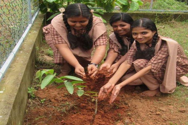 Amrita Vidyalayam-Plantation