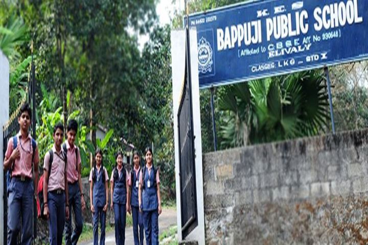 Bappuji Public School-School Entrance