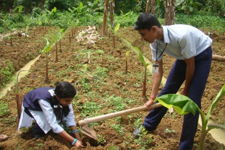 Bharatheeya Vidyapeedom Central School-Plantation