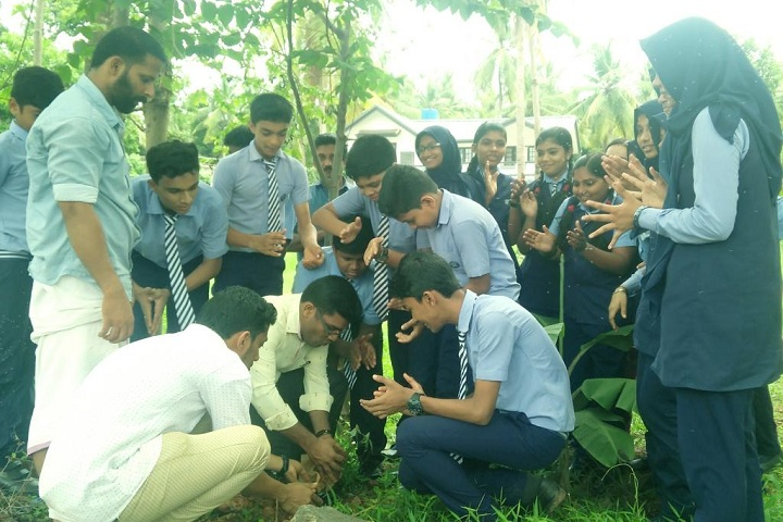 Blossom Secondary School-Tree Planting