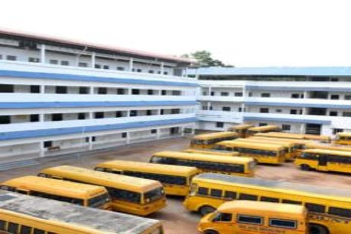 Blue Mount Public School-Transport
