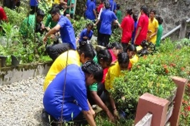 Carmel Convent English Medium School-Tree Plantation