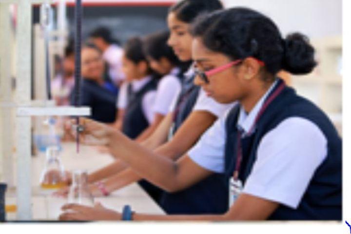 Carmel Public School-Chemistry Lab