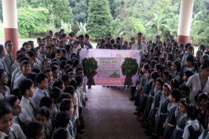 Carmel Rani Public School-Projects