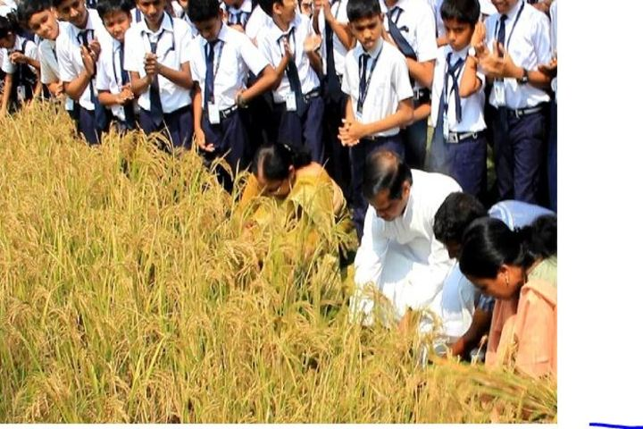 Chavara Darshan Cmi Public School-Field Activity