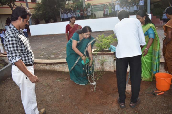 Chinmaya Vidyalaya-Tree Plantation