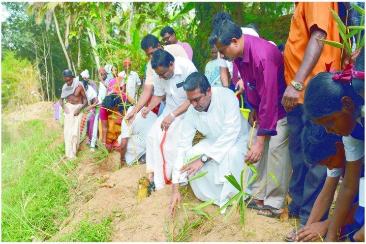 Christ Nagar Central School-Tree Plantation