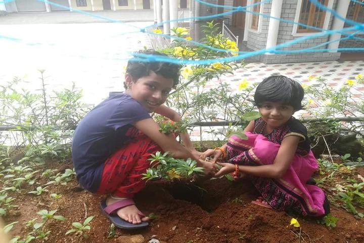 Christhujyothi English Medium School-Plantation