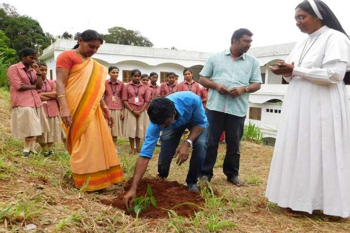 Christu Jyothi Public School-Tree Plantation