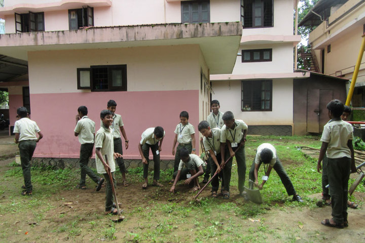 Co-Operative Public School-Tree Plantation