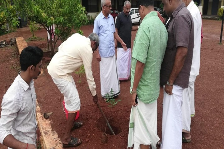 Darussalam English School-Tree Plantation