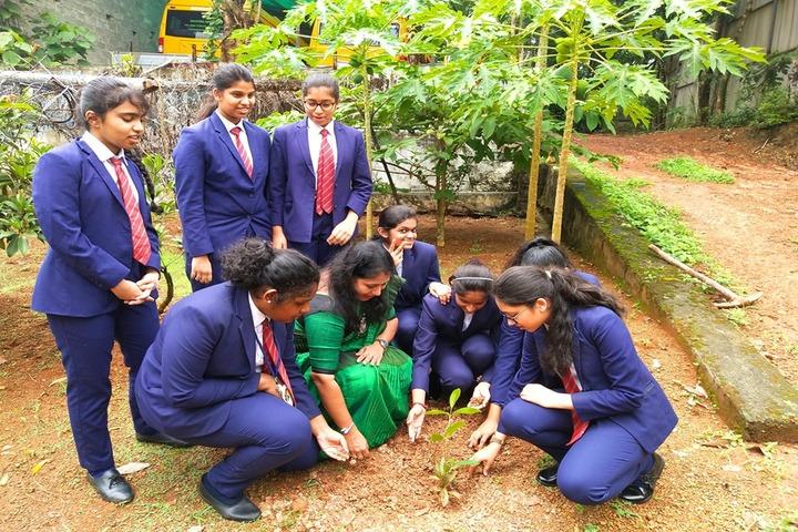 Dawn International School-Tree Plantation